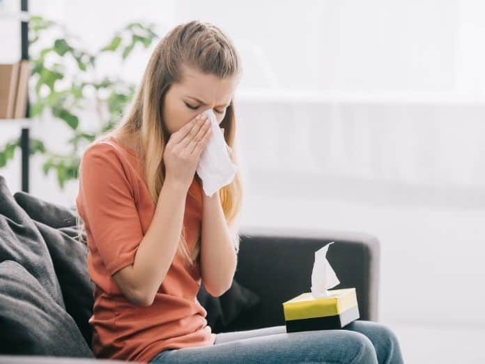 Is Your Home Triggering Your Allergies?