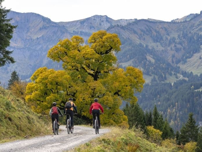 Fall Fitness Activities To Get in Shape the Fun Way